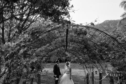 Casamento Renata e Vitor
